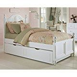 NE Kids Lake House Payton Twin Arch Bed with Trundle in White deals week