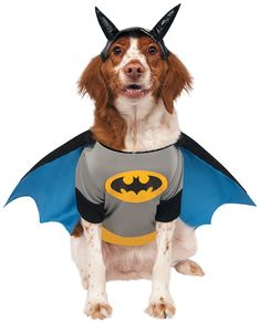 Rubies Costume DC Heroes and Villains Collection Pet Costume >>> Find out more about the great product at the image link.