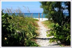 captiva- I've walked through this exact little path! It leads to a beautiful, peaceful beach!