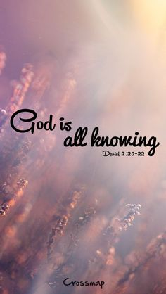 "God is omniscient ""He revealeth the deep and secret things: he knoweth what is in the darkness, and the light dwelleth with him. Bible Verses Quotes, Bible Scriptures, Faith Quotes, Favorite Bible Verses, Christen, Quotes About God, Heavenly Father, Way Of Life, Words Of Encouragement"