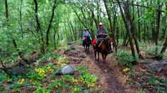 Dream Packer Trail Adventures: Dry Canyon, Cache Valley, Utah