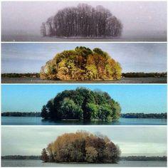 Le 4 stagioni, come non le avevamo mai viste