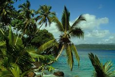 "Solomon Islands - Solomon Islands is a sovereign country consisting of a large cluster of islands. So far, the island has been spared the fate met by many of the other Solomon Islands, which ""are being ravaged by rampant logging,"" according to Conservation International amphibian expert Robin Moore. 