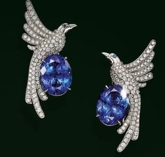 lovely pair of oval tanzanites and sapphires bring these @tiffanyandco spectacular earrings from to life. #purplebyanki #diamonds #luxury #loveit #jewelry #jewelrygram #jewelrydesigner #love #jewelrydesign #finejewelry #luxurylifestyle #instagood #follow
