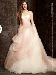 Vera Wang Tulle Ball Gown