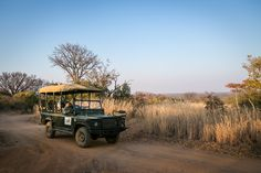 2 and 3 Hour Game Drives