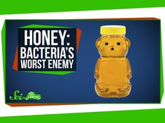 Watched 2016.05.16 | Honey: Bacteria's Worst Enemy