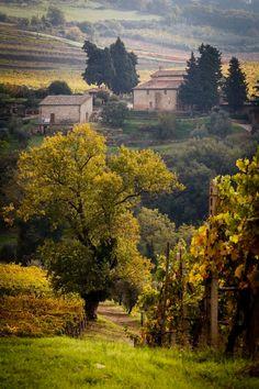 Castellina in Chianti, Italy #italyvacation #ItalyVacation