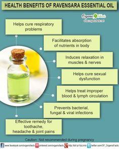 Health Benefits of Ravensara Essential Oil