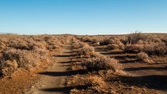 An early morning linear timelapse after rainfall on a Karoo landscape with a two track dirt road with gravel and shrubs as the shadows moves across with clouds moving in. Travel And Tourism, Early Morning, Geology, Shrubs, Stock Footage, Shadows, South Africa, Track, African