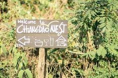 Visit Chiang Dao Nest in Chiang Dao, close to Chiang Mai