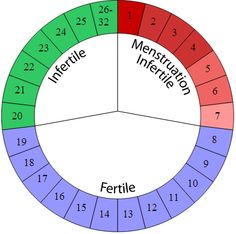 """The rhythm method (""""fertility awareness"""") is a method of birth control that uses the menstrual cycle to predict your most fertile time of the month. Nacimiento Natural, Rhythm Method, Natural Birth Control, Planning Calendar, Chances Of Getting Pregnant, Trying To Conceive, Family Planning, Visual Statements, Motivation"""