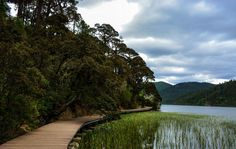 Top 10 wetlands in #Yunnan