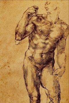 Michelangelo (line work)