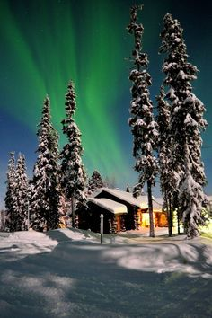 Northern Lights in Lapland, Finland. I wanna see! Oh The Places You'll Go, Places To Travel, Places To Visit, Beautiful World, Beautiful Places, Beautiful Pictures, Dream Vacations, Vacation Spots, Lofoten
