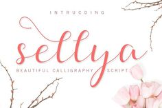 Sellya Script by ximents on @creativemarket