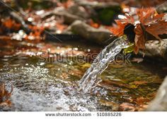 Autumn season and natural waters