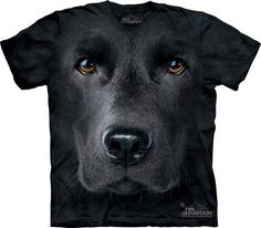 The Mountain Dog Black Lab Labrador Retriever Big Face Loyal Cute Dogs Puppy Friend Animal Pet Gift Labrador Noir, Black Labrador, Labrador Retrievers, Zebras, T Shirt Chien, Black Labs Dogs, Big Face, German Shorthaired Pointer, Gift Ideas