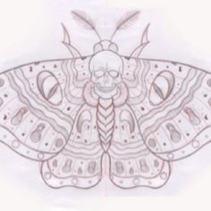 Gypsy moths w skull instead of butterflies- part of next tattoo- found on bing search.