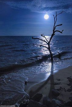Full moon at Maui Beach, Hawaii