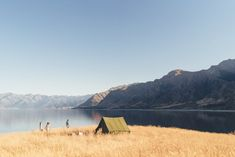 New Zealand - post now available New Zealand, Travel Inspiration, Mountains, Nature, Nature Illustration, Off Grid, Mother Nature, Bergen
