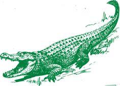 Green Alligator clip art
