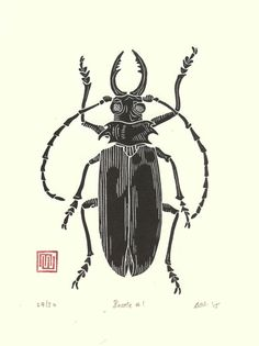 Items similar to Beetle Linocut Print // Handmade // Original // Limited Edition on Etsy Linocut Prints, Art Prints, Bug Art, Insect Art, Stencil Painting, Step By Step Drawing, Woodblock Print, Printmaking, Art Reference
