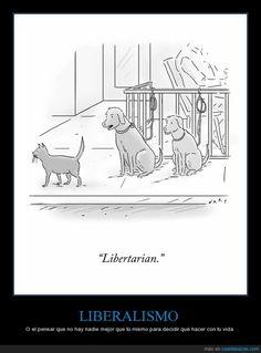 LIBERALISMO - O el pensar que no hay nadie mejor que tú mismo para decidir qué hacer con tu vida   Gracias a http://www.cuantarazon.com/   Si quieres leer la noticia completa visita: http://www.estoy-aburrido.com/liberalismo-o-el-pensar-que-no-hay-nadie-mejor-que-tu-mismo-para-decidir-que-hacer-con-tu-vida/