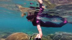 Near pink beach boat trip Scuba Girl, Pink Beach, Snorkelling, Lombok, Boat, Island, Pets, Girls, Animals