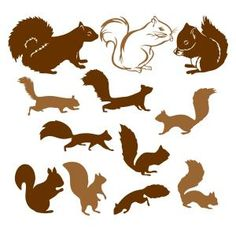 Squirrel Pack SVG Cuttable Designs