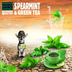 Spearmint & Green Tea
