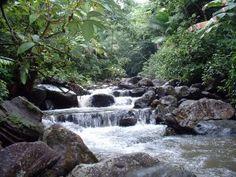 La Mina River - El Yunque