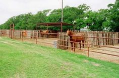 Oh, this would be wonderful (If there was a little more substance to the wall) for stallions or just ill-temepered horses. Or... mares lol