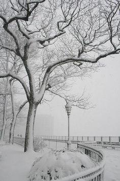 Brooklyn , NewYork.