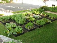 front yard garden idea raised beds for edibles maybe a little gate around it - Front Yard Vegetable Garden Ideas