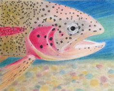 Out Trout: wearing her rainbow colors with pride.
