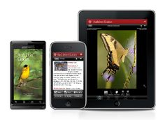 Audubon nature apps