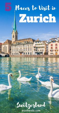 My 5 favorite places in Zurich. Must-see places to visit in Zurich. Lake Zurich. Switzerland. Nature