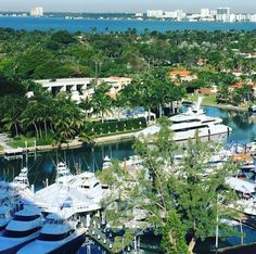 Who is #MiamiBoatShow ready? #3days  Photo by WJH