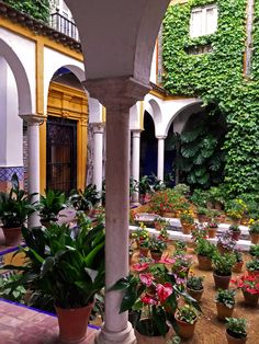 Patio in Seville, Spain