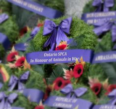 wreath, National Remembrance Day Ceremony