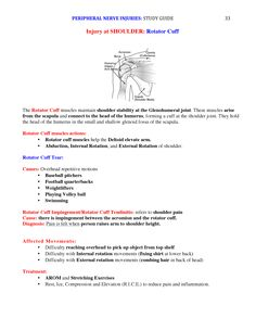 Peripheral Nerve Injuries Study Guide page 33