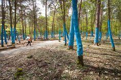Wald.Berlin.Klima. – Exhibition in the Forest by hochC Landscape Architects + gewerkdesign «  Landscape Architecture Works   Landezine