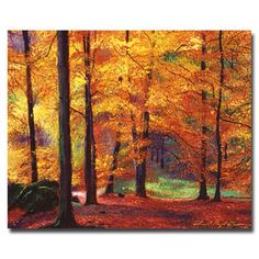 @Overstock.com - David Lloyd Glover 'Autumn Serenity' Canvas Art - Artist: David Lloyd GloverTitle: Autumn SerenityProduct Type: Gallery-wrapped canvas art http://www.overstock.com/Home-Garden/David-Lloyd-Glover-Autumn-Serenity-Canvas-Art/7539294/product.html?CID=214117 $45.04
