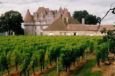 Monbazillac, vallée de la Dordogne, France