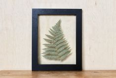 Framed Plants From Etsy Are The Decor Trend You Need To Know About   StyleCaster Modern Cabin Decor, Rustic Decor, Easy Frame, Botanical Decor, Copper Frame, Save On Crafts, Hanging Frames, Dream Decor, Inspirational Gifts