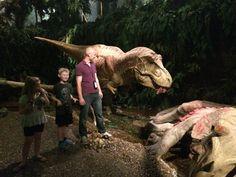 Dinosaur museum in germany