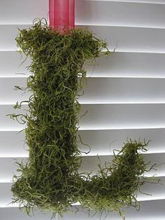 Life Love Larson shows you how to make a faux Moss Letter Wreath. Moss Covered Letters, Moss Letters, Monogram Letters, Earthy Living Room, Diy Arts And Crafts, Diy Crafts, Letter Wreath, Christmas Porch, Christmas Letters
