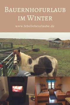 Ponyreiten, Kühe melken, Landluft schnuppern - geht auch gut im Winter. #bauernhofurlaub #urlaubaufdembauernhof #ferienhausurlaub #urlaubmitkindern #urlaubindeutschland