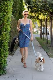 Another Lady walking the dog